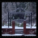 Random Thoughts-Ice Storm Day Two
